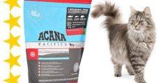 Что скрывает упаковка корма «Акана» для кошек?