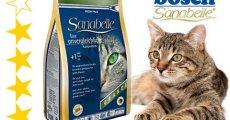 Обзор продукции от Бош для кошек – ассортимент, плюсы и минусы