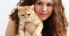 Гипоаллергенные кошки: лучшие питомцы для человека с аллергией