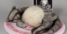 Вирусный перитонит у кошек: самый опасный кошачий вирус