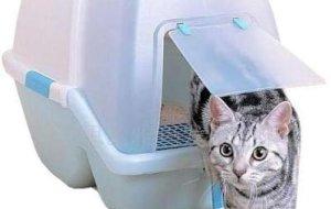 Выбираем закрытый кошачий туалет – модельный ряд, за и против