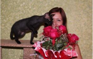 Жил да был черный кот…
