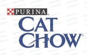 К какому классу на самом деле относится корм для кошек Кэт Чау?