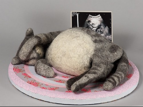 Кот с большим животом