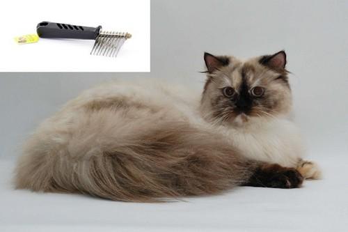 Колтунорез для ухода за шерстью котов