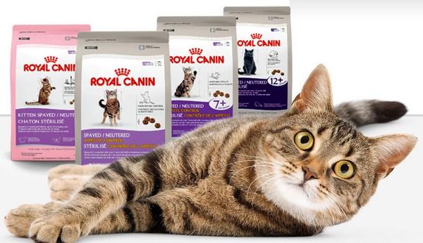 RoyalCanin для кошек