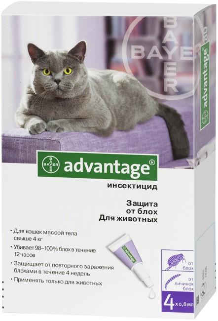 Advantage - эффективный препарат от блох