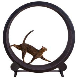 Беговое колесо для кошек Cat Exercise Wheel